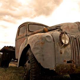Old and Stately by Barbara Brock - Transportation Automobiles ( old car, beat up old car, car in the field, antique car )