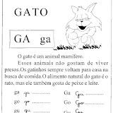 gato_gif.jpg