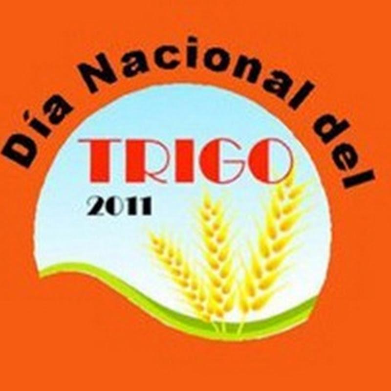 Día Nacional del Trigo