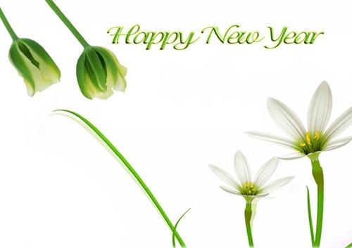 New-year-wallpaper-2012-35[5]