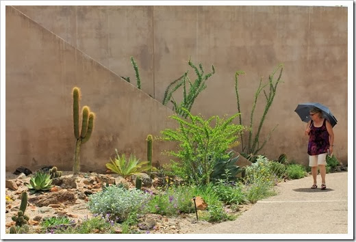120728_ArizonaSonoraDesertMuseum_463