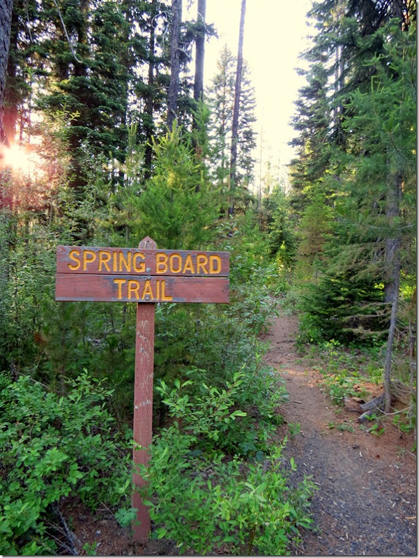 Spring Board Trail