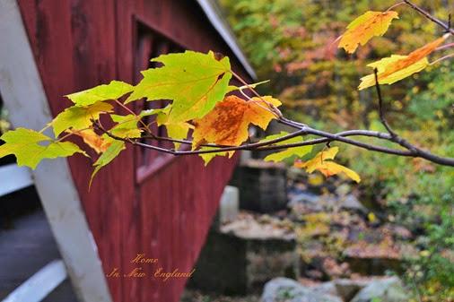fall bridge2