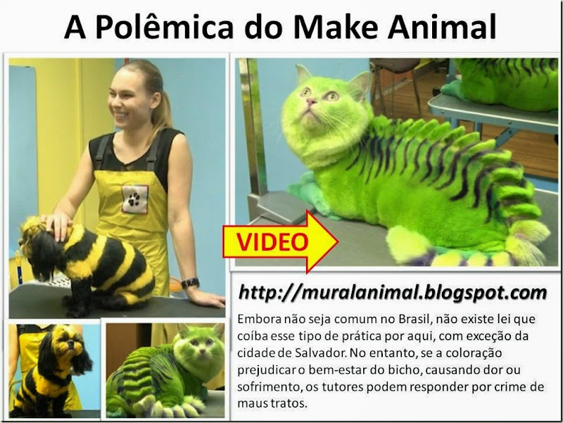 a polemica do make animal