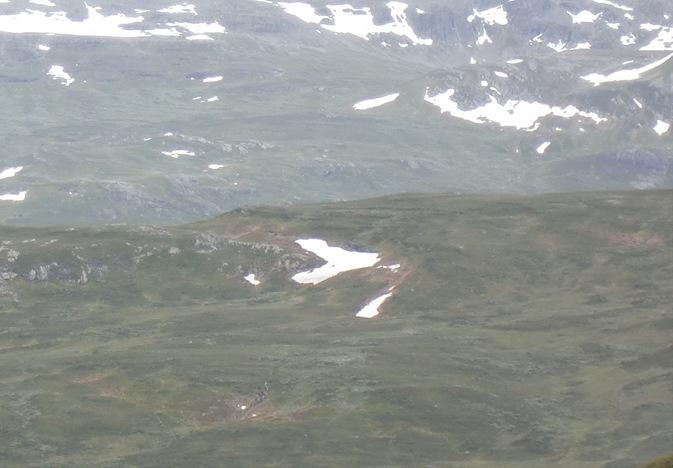 Tinn-Valdres-Sjoa juli 12017