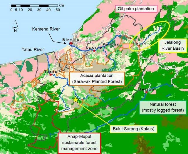2010共同調査地図.jpg