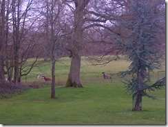 West Oxfordshire-20130419-00261