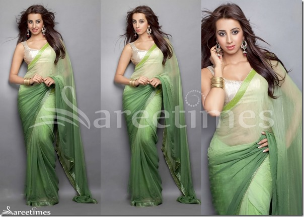 Sanjana_Georgette_Saree