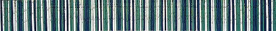 Kyosso sai 2013 -  Glória Ishizaka - 1 a a