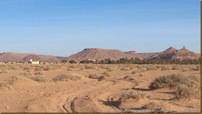 Desierto-348