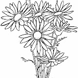 daisy-6-coloring-page.jpg