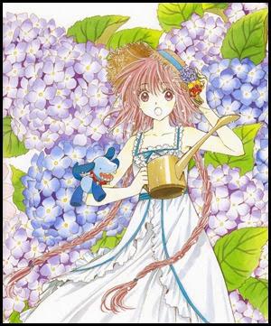 kobato Hanato hortensia vers