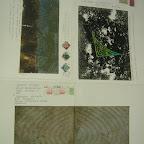 correspondances 2011 089a.jpg