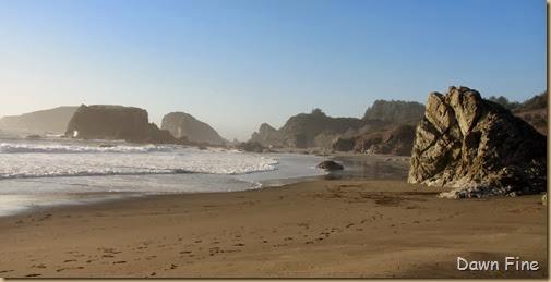 Harris Beach_314