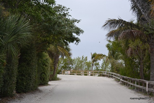 Road to the Fishing Pier