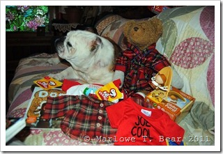 tn_2011-12-26 Marlowe, Princess, and the Christmas Presents (3)