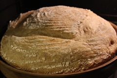 10-percent-whole-wheat-loaf_009