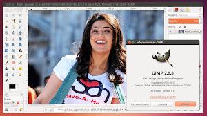 Gimp 2.8.8 Ubuntu Linux