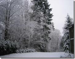 snowstorm1201_08