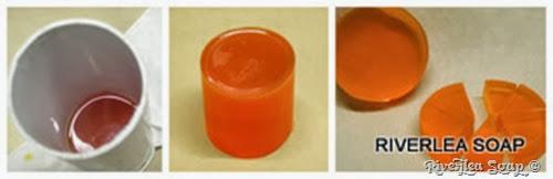 Citrus Slice 2