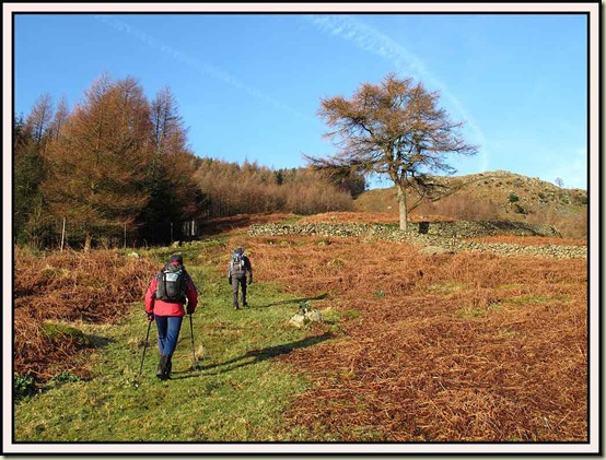 The steep ascent to Brown Rigg