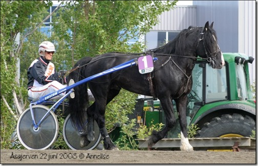Åsajerven-juni2008-leangen