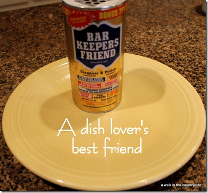 A Dish Lover's Best Friend