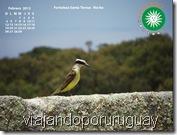 Fondo de Pantalla Febrero 2012 Uruguay