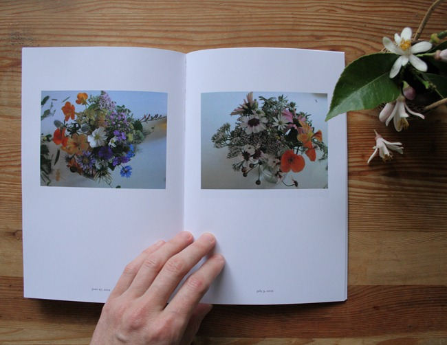 Jaime Rugh - Backyard Flowers Book 4