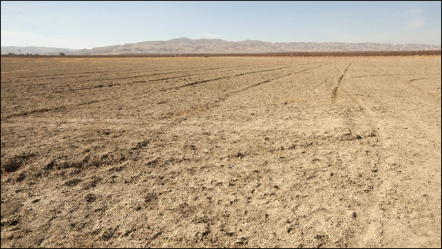 Central Valley fields near San Joaquin are parched by drought conditions, 19 May 2014. Photo: Gregory Urquiaga