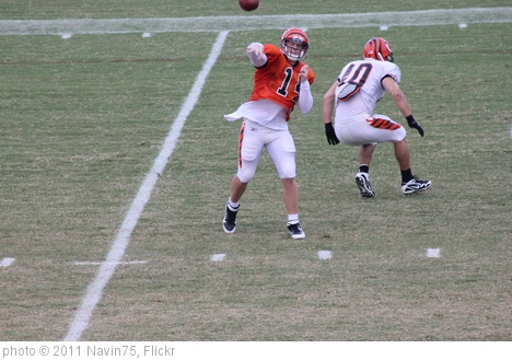 'QB Andy Dalton' photo (c) 2011, Navin75 - license: http://creativecommons.org/licenses/by-sa/2.0/