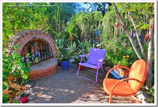 131203_TucsonBotanicalGarden_157