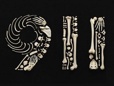 Francois-Robert-Bones-art-15