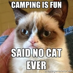 camping is fun with grumpy cat