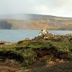 Islandia_087.jpg