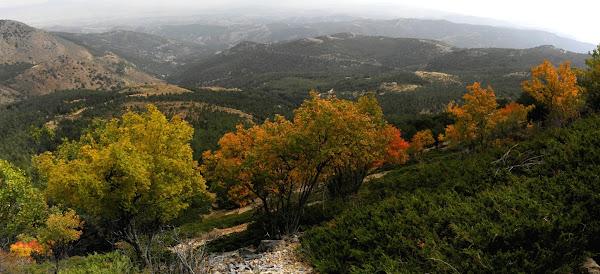 otoño en la sierra de baza