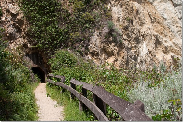 Partington Cove Trail - Big Sur, CA