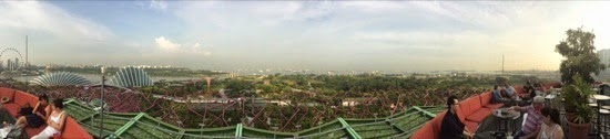 Panorama from the bar up the 'tree' at Gardens by the Bay