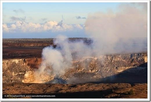140724_HawaiiVolcanoesNP_0216