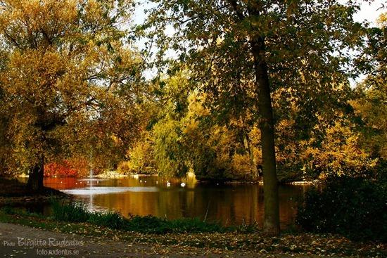 lund_20111024_parken2