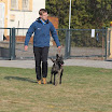 IMG_0592.JPG - Nick und Beau