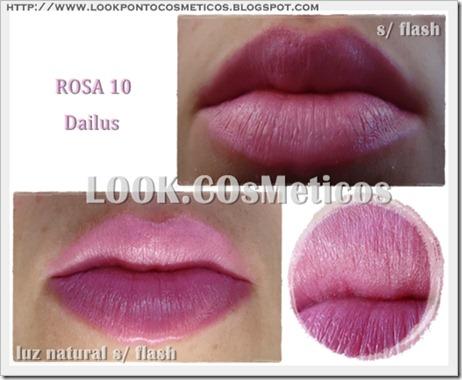 rosa10 dailus