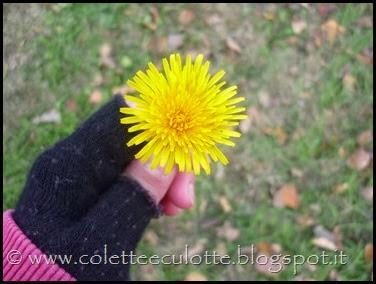 I bambini delle classi 1° della Scuola Primaria di Padulle piantano il grano! (43)