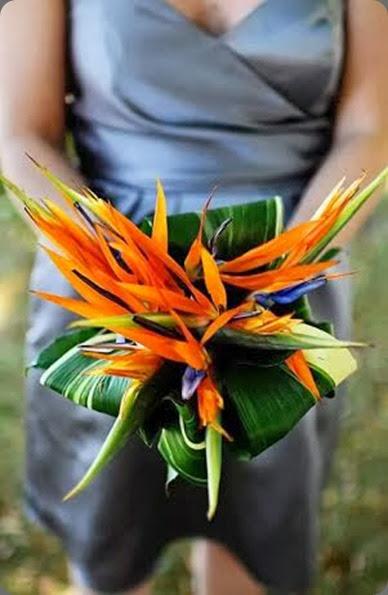 la petite fleur unnamed
