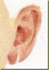 Souzi's Ear