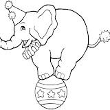 elefante-10.jpg
