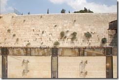 Oporrak 2011 - Israel ,-  Jerusalem, 23 de Septiembre  230