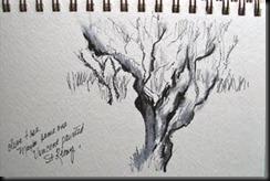 St Remy, Bonnie's tree