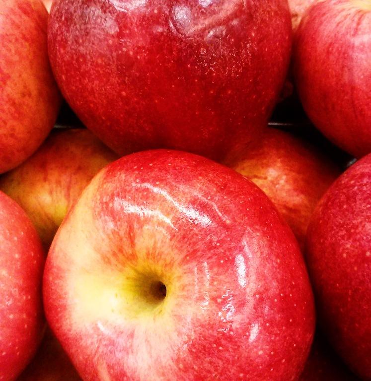 [Maggielamarre-apples%255B5%255D.jpg]