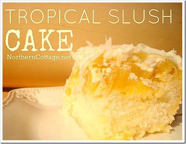 northerncottage tropical slush cake